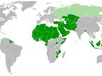 Ислам и будущее мира (2014)